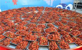 平舆【同信·爱家壹號】 万人吃龙虾的盛况,你见识到了吗?