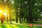 平舆【颐高创业小镇】城市不缺公园,缺的是公园住区