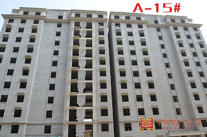 A-15#.jpg