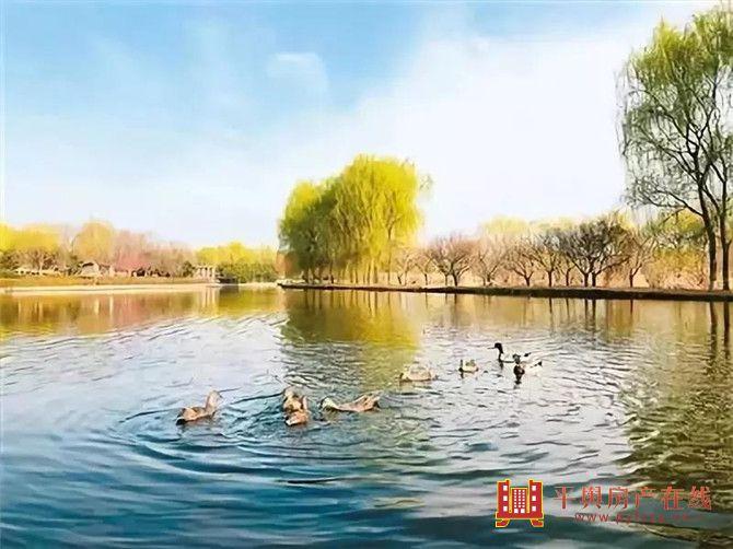 平舆【永辉·碧水湾】 诗意人生,当临河而憩