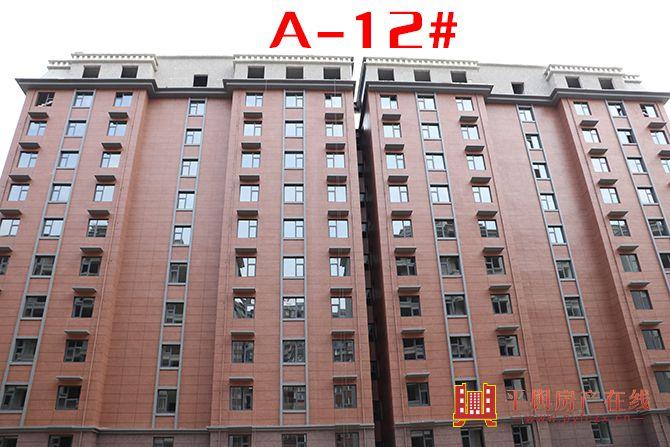 A-12#.jpg