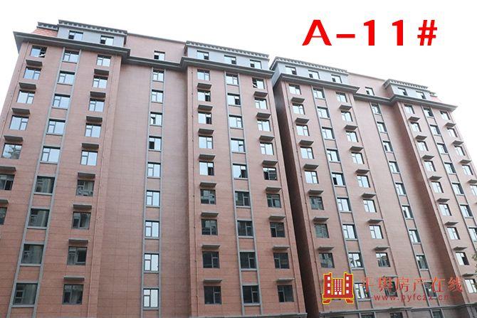A-11#.jpg