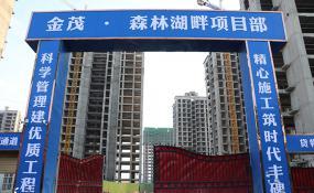 平舆房产【金茂森林湖畔】2019年10月工程进度播报