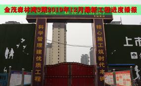 平舆房产【金茂森林湾3期】2019年12月工程进度播报——岁末家音至