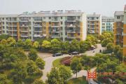 郊区的房子值不值当购买?满足这4点条件再出手!