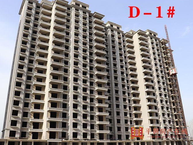 D-1#.jpg